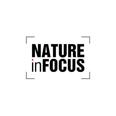 Marine Life of Mumbai in Nature in Focus